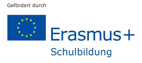 2017 logo erasmus plus